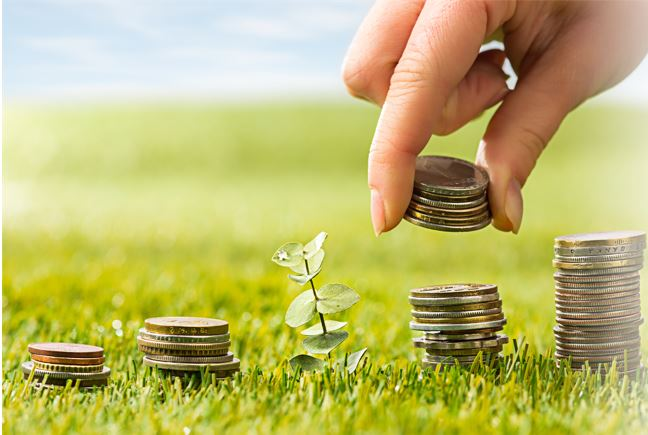precio de la sostenibilidad